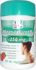 1x1 Magnézium 250 mg +B6 Rágótabletta